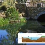 Bridgeport Lake Bridge