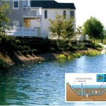 Bridgeport Lake Homes