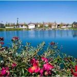 Woodbridge Lake Flowers