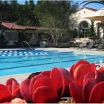 Canyon Club at Crystal Cove Swimming Pool