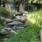 Morningside Stream and Sidewalk