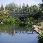 Riverwalk Stormwater Management Stream Bridge
