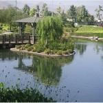 Riverwalk Stormwater Management Stream